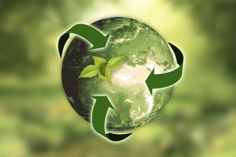 Was Evergreen-Content zum langlebigen Sieger macht